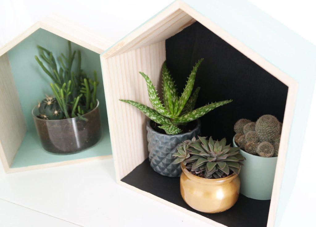 diy-maison-cactus