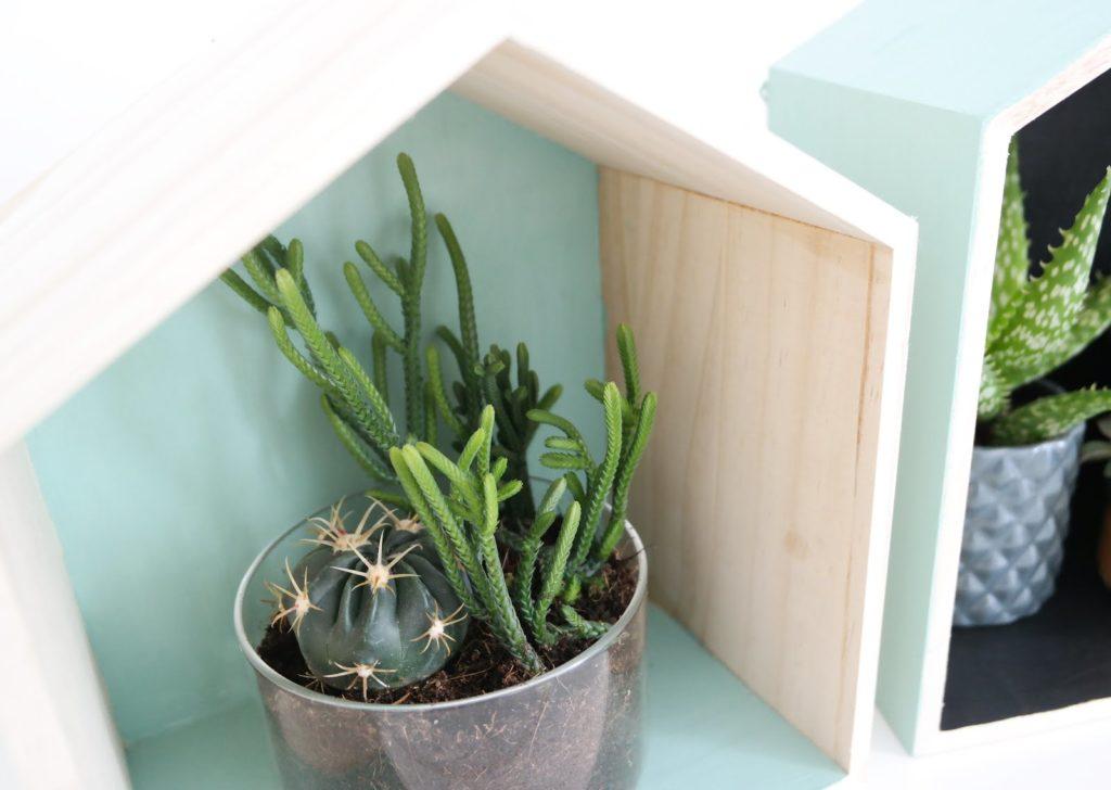 diy-maison-bois-cactus