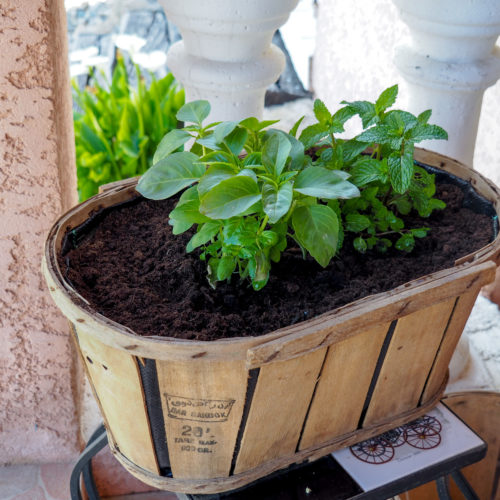 jardinière-cagette-ancienne-diy