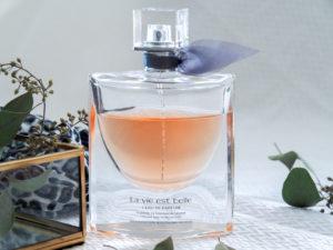 mes-parfums-favoris-parfumdo-shylylovely