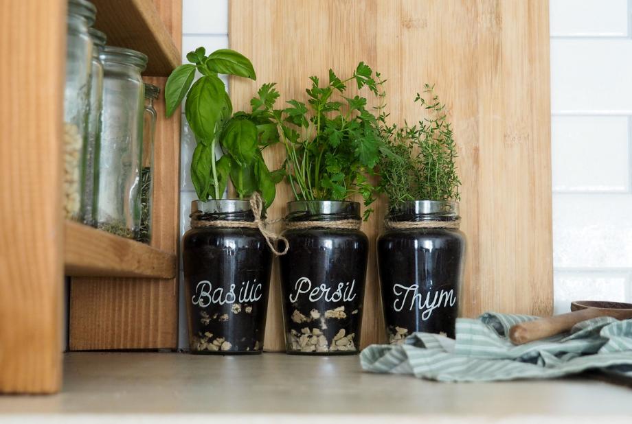pot d'aromates avec pots en verre whole earth